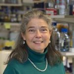Prof Fiona Karet, Nephrology